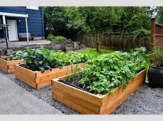Charming Decoration Container Vegetable Garden Ideas Patio