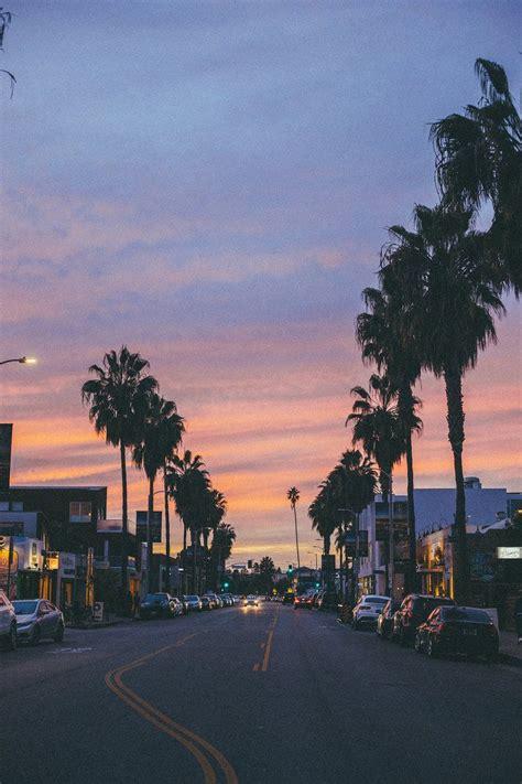venice beach california sunset palm trees