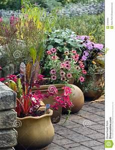 Plantes En Pot Pour Terrasse : jardin de terrasse avec des plantes en pot image libre de ~ Dailycaller-alerts.com Idées de Décoration