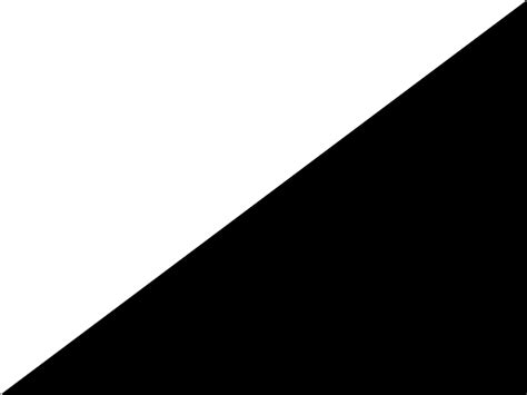 Fileauto Racing White Blackg