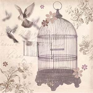 Bronze Birdcage canvas by Arthouse : Wallpaper Direct