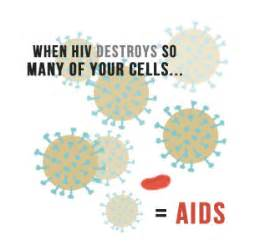 When HIV Destroys so many of your cells... = AIDS Immune System/AIDS