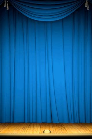 BLUE CHECK CURTAINS ? Curtains & Blinds