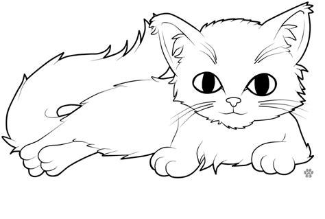 Colour Me Kitty By Csinorman On Deviantart