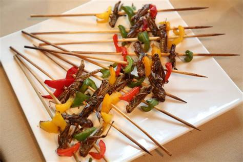 insecte cuisine edible insects go gourmet for s largest gathering of