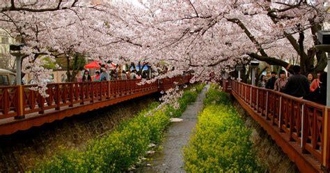 gambar pemandangan alam terindah  jepang