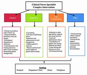 Components Of Clinical Nurse Specialist Interventions
