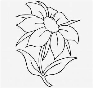 Very Easy Flower Drawing Photos Flower Drawing Easy Simple ...