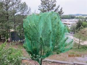 best netting for fruit trees