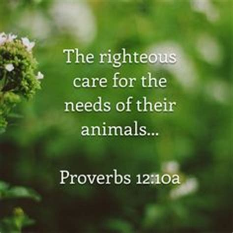 top  bible verses   care  animals