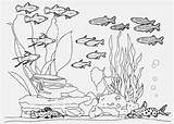 Fish Tank Aquarium Coloring Pages Drawing Sketch Printable Paintingvalley Sketches Getcolorings Explore sketch template
