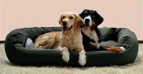 exklusive hundebetten testsieger luxus hundebetten