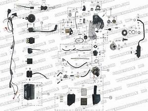 Terminator Pocket Bike Wire Diagram