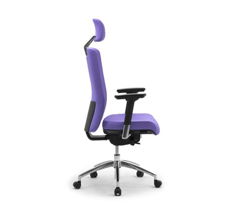 Ergonomic Office Chair With Lumbar Support by Ergonomic Office Chair With Lumbar Support Leyform