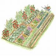 Garden Design And Planning Design From The Garden To The Table Garden Layout And Plant List