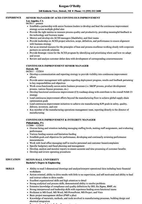 manager improvement resume sles velvet