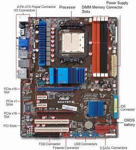 Hardware  Software Support  September 2010