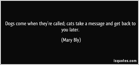 how to get a cat to come to you dogs come when they re called cats take a message and get