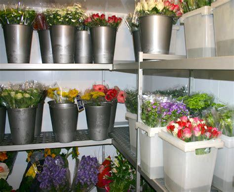 chambre froide fleuriste occasion casaflor com chambre climatique pour fleurs coupées