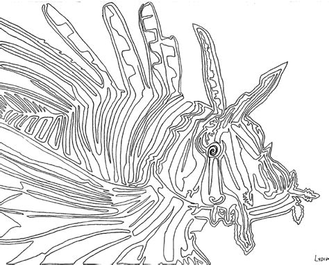continuous  drawing lion fish continuous