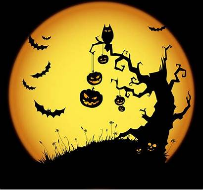Halloween Traditions Symbols Favorite Saints Catholic Spooky