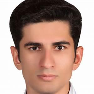 Seyed Ali Elahi | PhD Candidate | Grenoble Institute of ...