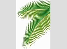 Palm free vector download 299 Free vector for commercial