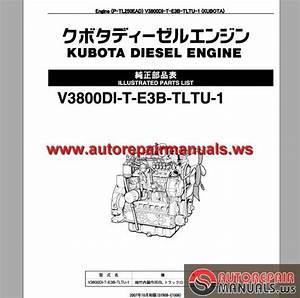 Takeuchi Track Loader Engine V3800di-t-3b-tltu-1 Parts Manual