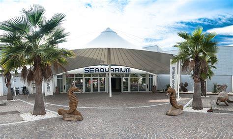 le seaquarium une sortie 224 faire en famille