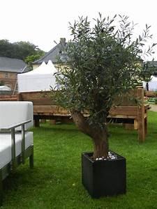 Wetterfeste Kunstpflanzen Balkon : olivenbaum kunstpflanze ik1 ~ Michelbontemps.com Haus und Dekorationen