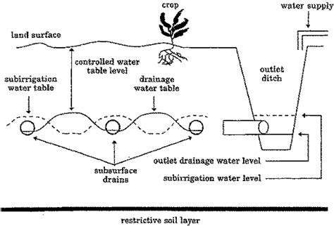 high water table drainage chapter 3 water table management