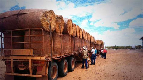 Eireka donation of $25,000 - Supporting Australian Drought