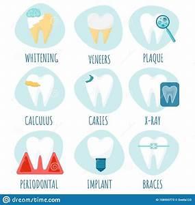 Veneers Teeth Of Dental Cartoon Vector