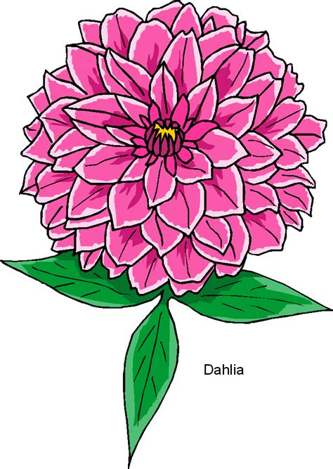 free clipart microsoft dahlia free flower clipart png