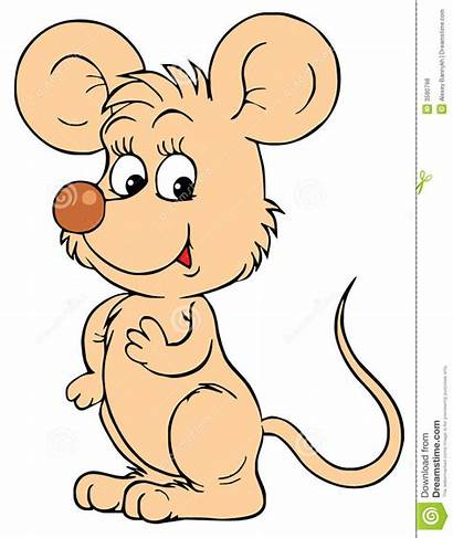 Mouse Clip Maus Souris Muis Clipkunst Vektorc