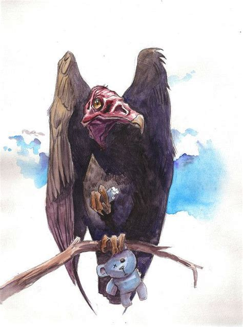 images  vultures  pinterest drawings