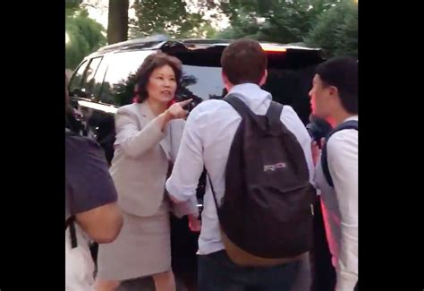 angry protesters confront elaine chao mitch mcconnell