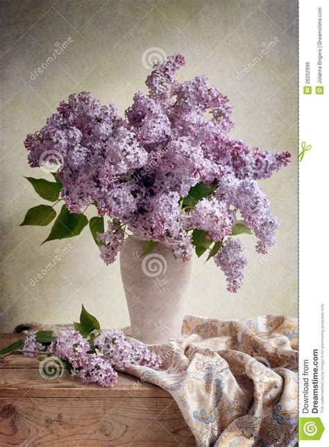 lilac bouquet royalty  stock image image