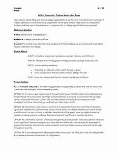 College essay what to write about bamboodownundercom for College essay format