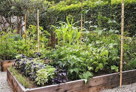 Gemüsegarten Anlegen Beispiele by Permakultur Garten Gemuese Beet Anlegen Beispiele Garten