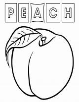 Peach Coloring Pages Food sketch template