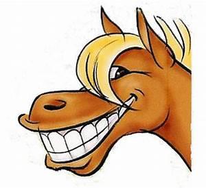 Cartoon Horse Head - Cliparts.co