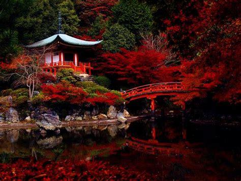 beautiful japan beautiful landscapes photo