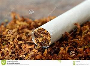 Nikotin Von Fensterscheiben Entfernen : zigarette tabak stockfoto bild von hilfsmittel chemikalie 45597190 ~ Markanthonyermac.com Haus und Dekorationen