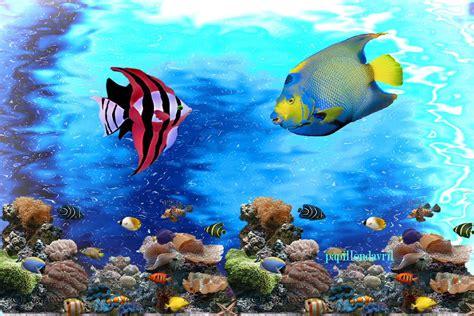 fonds ecran poissons