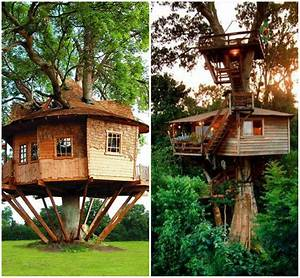 House interior designs kitchen, crazy tree house adult