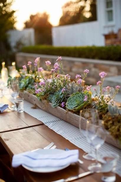 Succulent Table Centerpieces Reception Weddingomania Succulents