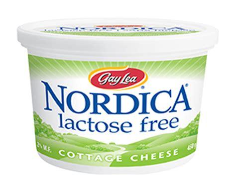 cottage cheese lactose cottage cheese lea
