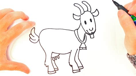 draw  goat  kids goat easy draw tutorial