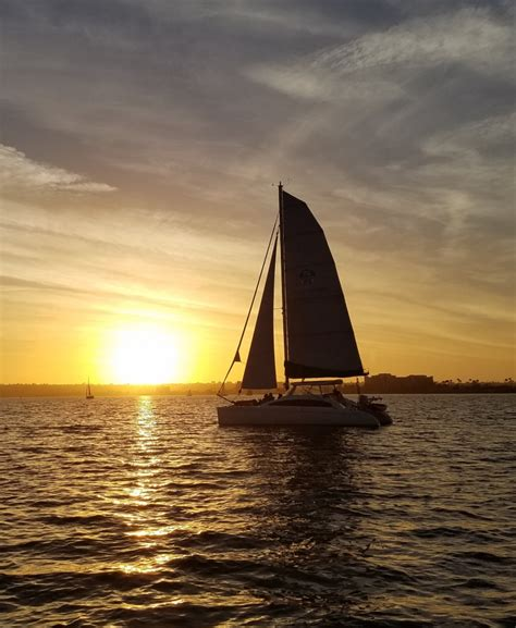 San Diego Boat Tours by Boat Tours San Diego Cat Sailing Sailfuncat